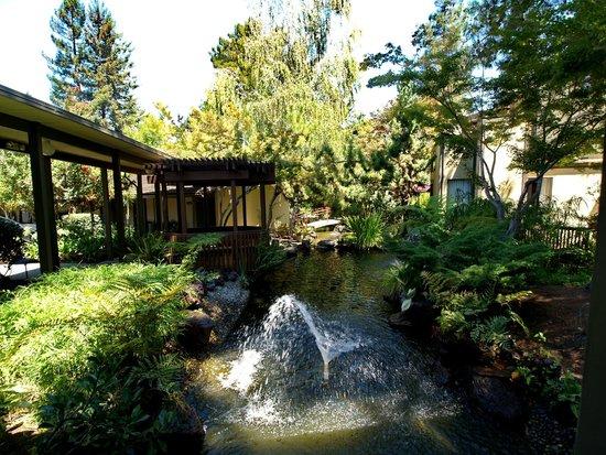 Habitacion Picture Of Dinahs Garden Hotel Palo Alto Tripadvisor Dinah 39 S Garden Hotel New Led