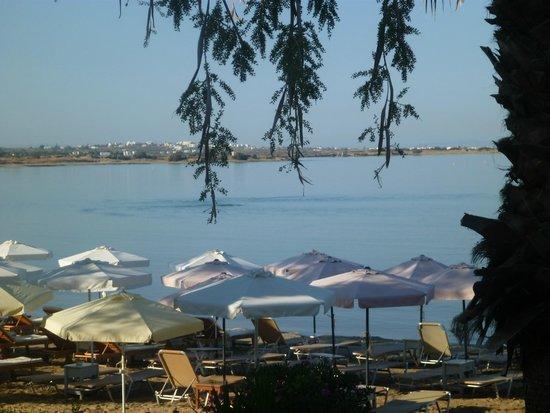 Kalergis Studios: View of beach area