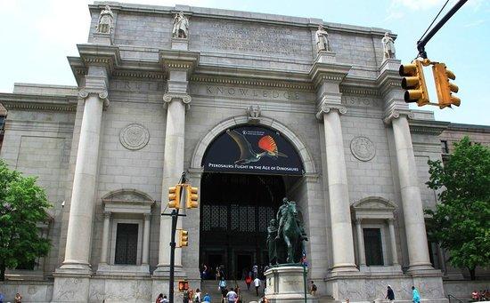 American Museum of Natural History : AMNH1