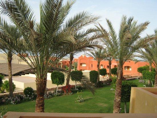 Sharm Grand Plaza : территория