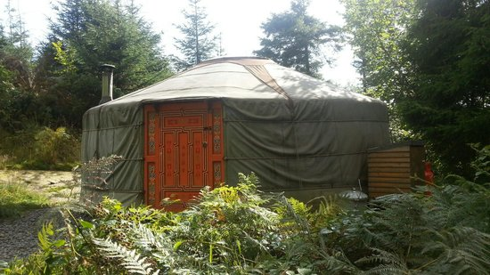 Lovely Yurt Company: 19 ft yurt most secluded