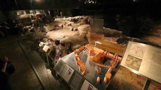 Gråbrødrekloster Museet