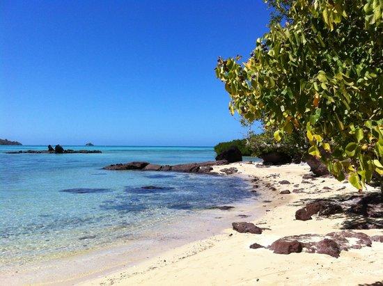 Navutu Stars Fiji Hotel & Resort: spiaggia di fronte al bure