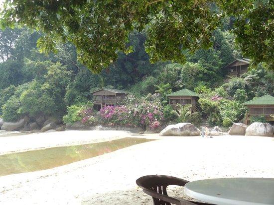 Bamboo Hill Chalets : Chalet vu du restaurant le plus proche
