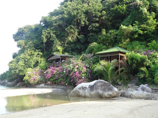 Bamboo Hill Chalets: Chalet no 2