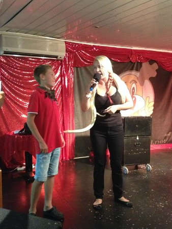 Hotel HSM Maria Luisa : Our brand new show in the HSM Maria Luisa!