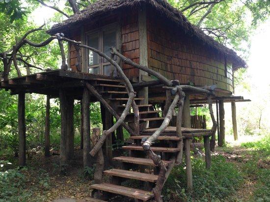 andBeyond Lake Manyara Tree Lodge: Beautiful lodge