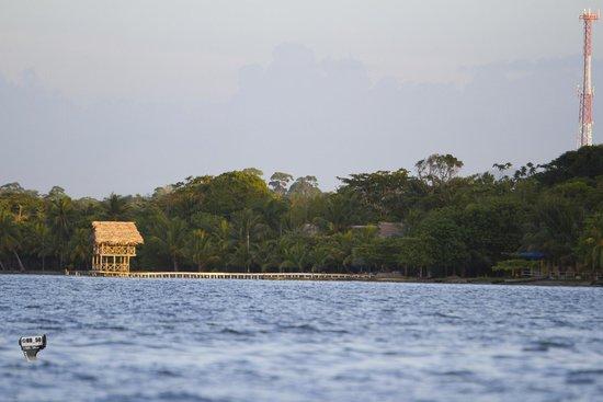 Hotel Salvador Gaviota: Buen lugar, hermosa vista!