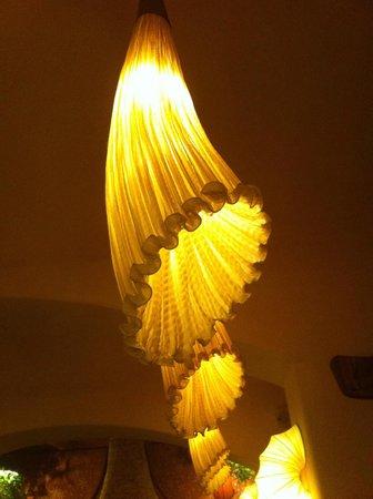 Maitrea: Fixtures an shades create a beautiful ambient light.