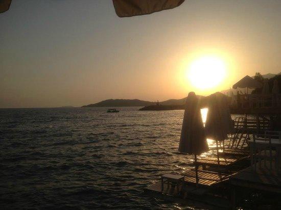Medusa Hotel: beach