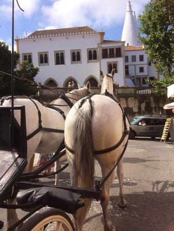 Hotel Tivoli Sintra: Horse Drawn carrige rides