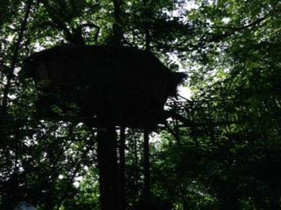 Les Cabanes de Fontaine: LA CABANE BARON PERCHE