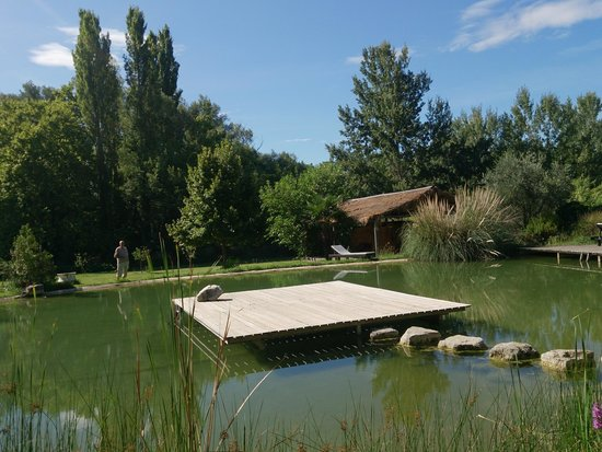 Hostellerie Le Paradou: Scorcio del giardino