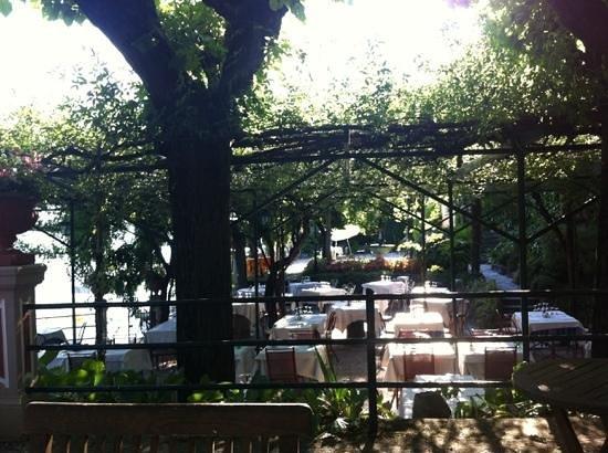 Hotel Stella d'Italia: Garten