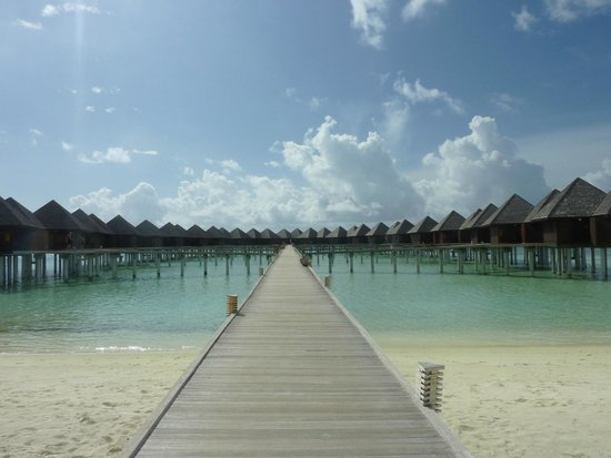 Olhuveli Beach & Spa Resort : overwatel villas