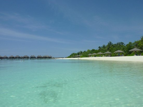 Olhuveli Beach & Spa Resort : beach