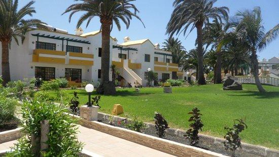 Labranda Corralejo Village : Apartments