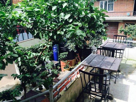 hotel peace n park katmandu nepal opinie o hotel oraz rh pl tripadvisor com