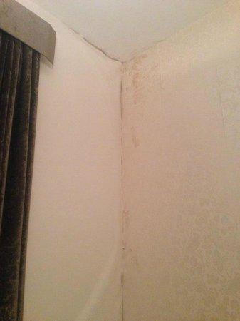 Heythrop Park Resort: Bedroom 2 Wall Damp
