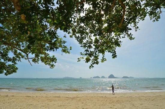 The Tubkaak Krabi Boutique Resort : Strand mit Aussicht