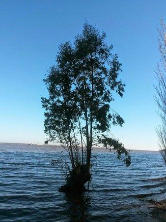 Nueva Palmira, Uruguai: atardecer en el Rio Uruguay
