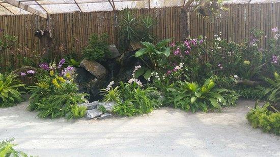 Kurumba Maldives: Flowers Garden