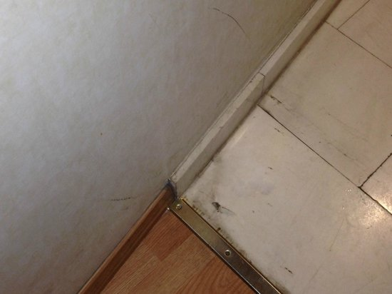 Hotel Catalonia Sagrada Familia: Floors clean then???