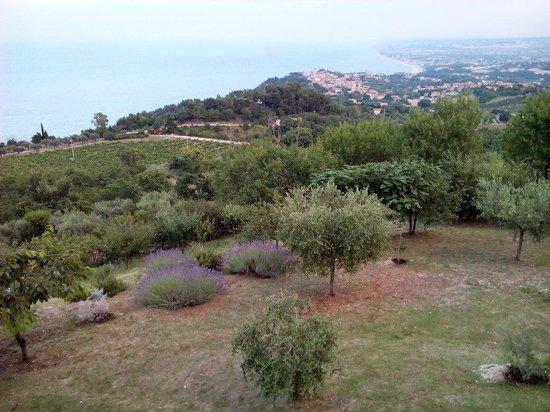 Bar Belvedere : Panorama, da Sirolo...fino a perdita d'occhio...