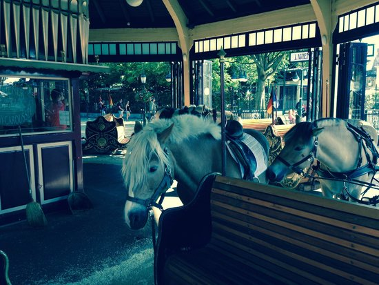 Prater : merry-go-round with horses