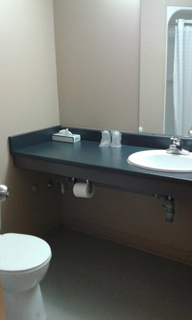 Residence & Conference Centre - Ottawa West: bathroom, basic towels provided