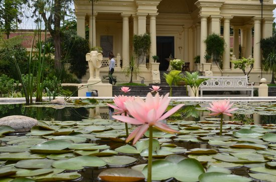 Garden of Dreams : lily pond