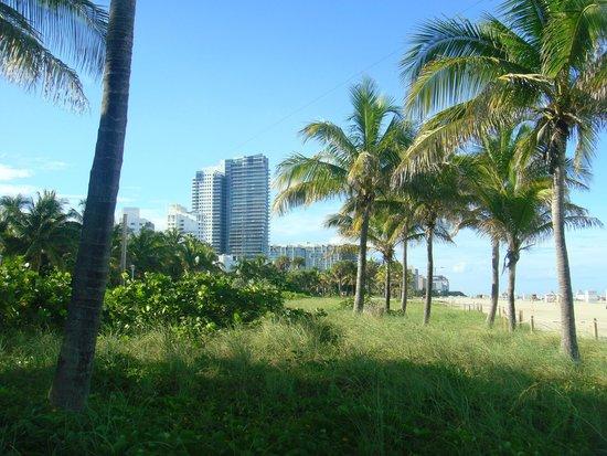 Miami Beach Boardwalk: amplitude e beleza