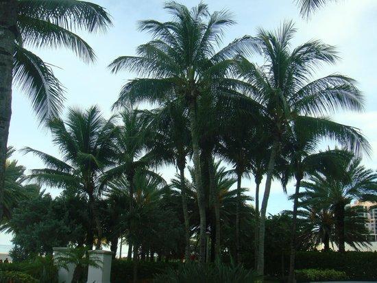 Miami Beach Boardwalk: paz e relaxamento