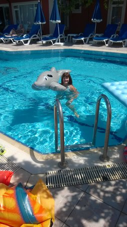 Red Rose Hotel: swimming with dolphin