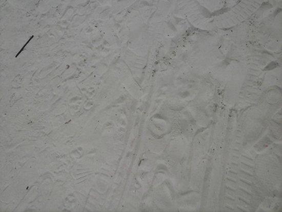 Clearwater Beach: areia branca e fina