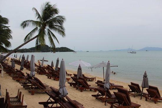 Bandara Resort & Spa: Beach side at Bandara