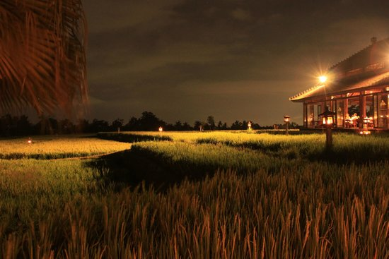 The Chedi Club Tanah Gajah, Ubud, Bali – a GHM hotel : Restaurant and rice fields