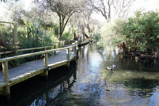 Willowbank Wildlife Reserve: 川の流れる園内