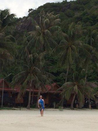 Palita Lodge : чем не баунти?