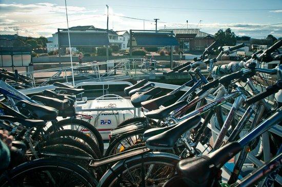 East Coast Cruises: Bikes up top