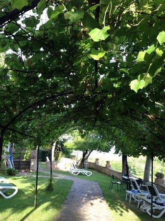 Hotel Pescille : Garden view