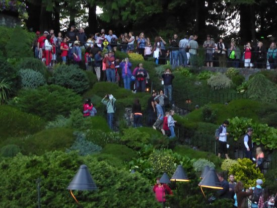 The Butchart Gardens: It's a busy plance