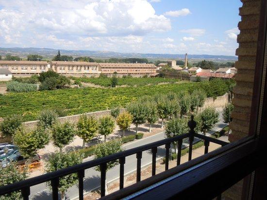 Hotel Merindad de Olite: vista dalla stanza ad olite