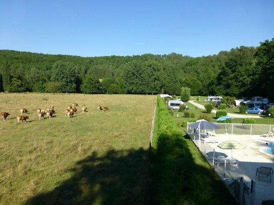 Camping Le Bois du Coderc: Voisinage