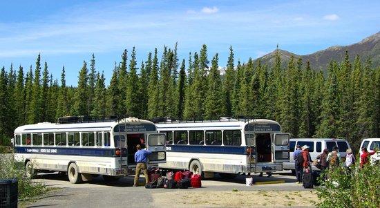 Camp Denali : Bus Pick-up at Park Entrance