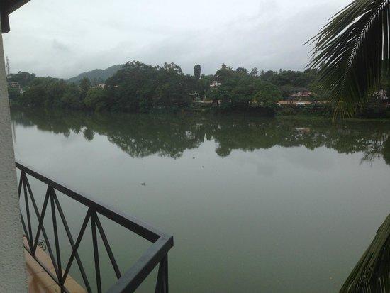 Mahaweli Reach Hotel: Lake view