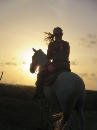El Paseo Ranch Aruba: Candi @ Sunset on Angel