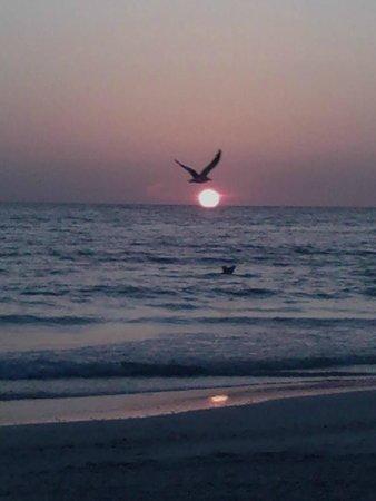 Tradewinds Beach Resort: Sunset