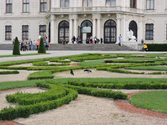 Schloss Belvedere: belvedere