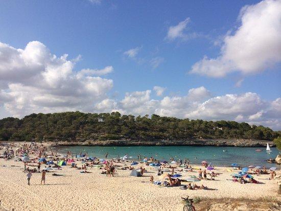 Parc Natural de Mondrago: Playa